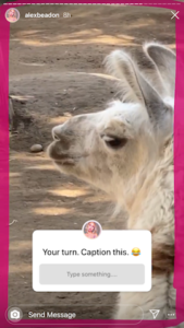 instagram story question sticker example 3